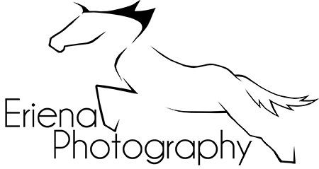 Eriena Logo